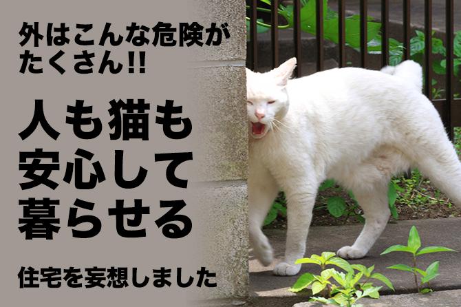外はこんな危険がたくさん!!人も猫も安心して暮らせる住宅を妄想しました