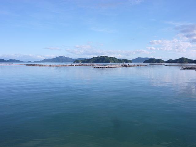 安浦町の風景